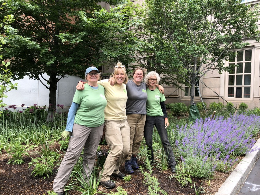 Chinatown zone volunteer Karen Bergstrand and Steph Almasi, Seasonal Horticulturist and Volunteer Programs Assistant, are joined in their zone by Nicole Semeraro, Seasonal Horticulturist and volunteer Bonnie Thrysellius.