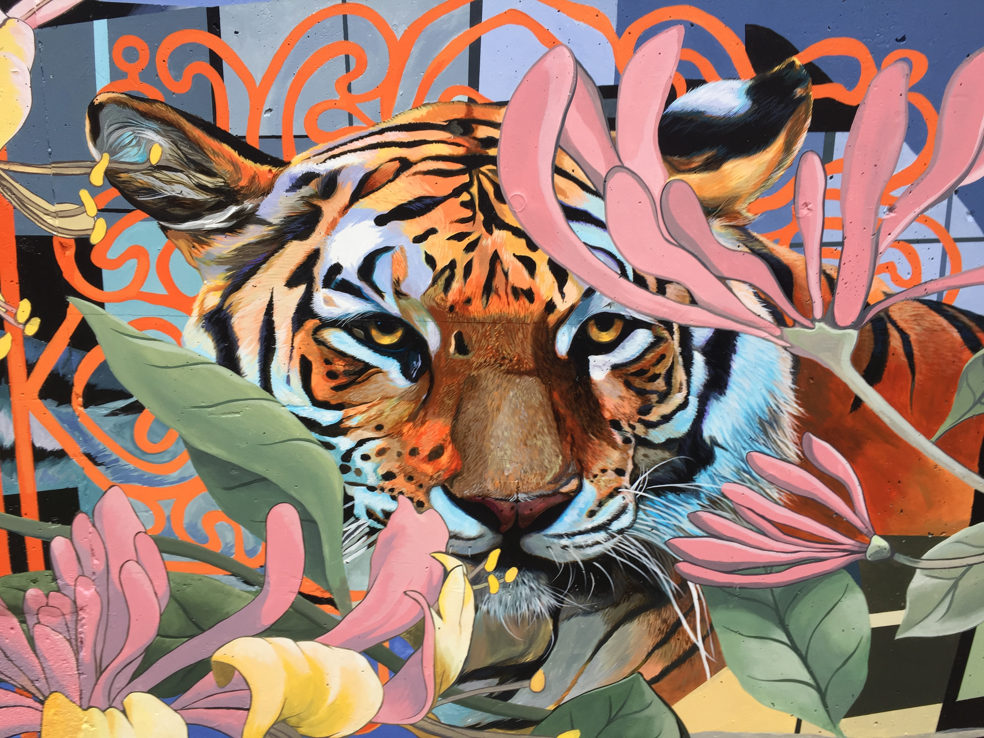 A photorealistic painting of a tiger is surrounded by faded pink and yellow flowers. In the background, an organic orange line pattern surrounds the head of the tiger.
